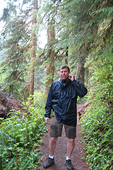The rain forest of the Olympic National Park, Washington State